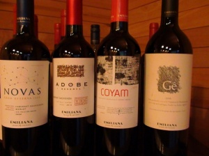 Wines of Emiliana